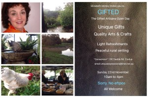 Gifted Open Day
