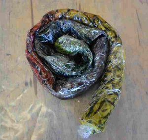 Fibre reactive dyeing cotton and silk with Sara Quail